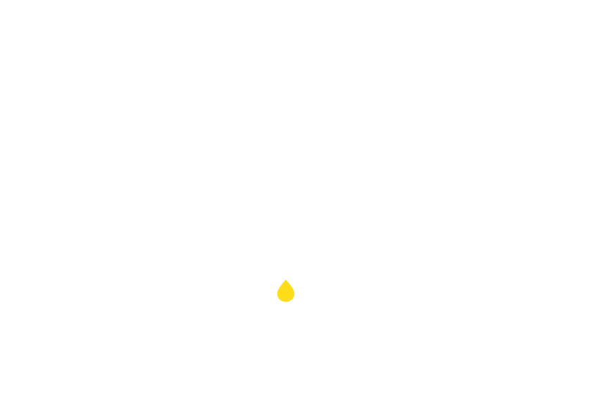 Zumo Logo - Visual Creations